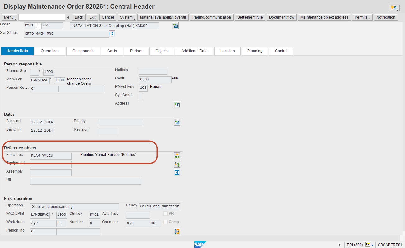 Fig. 9. Linear Assets Maintenance :: Maintenance Order in SAP GUI